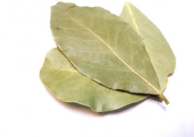 Tuj Patta (Bay Leaves)